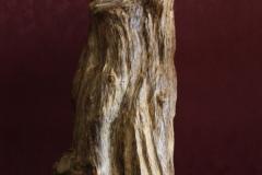加里萬丹老沉木